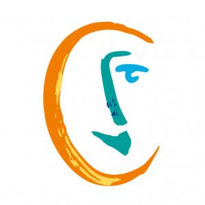 Solidarités nouvelles face au chomage Logo