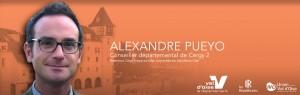 Alexandre PUEYO Conseiller départemental du Val d'Oise